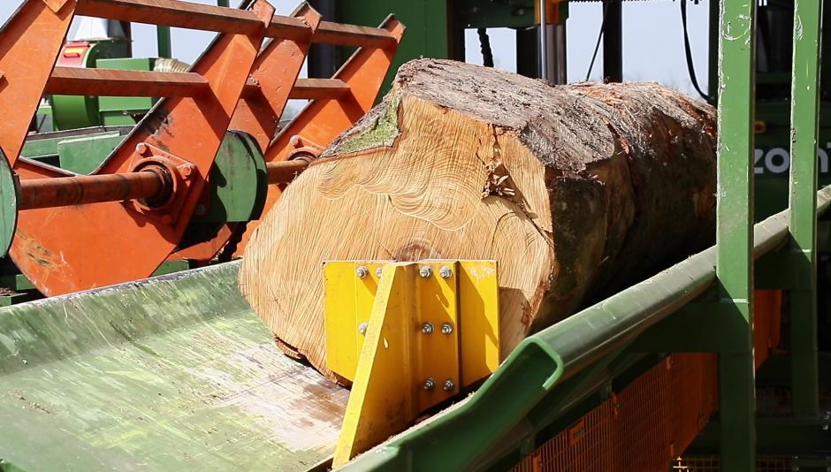 Tm macchina per taglio tronchi grandi dimensioni for Grandi capanne di tronchi